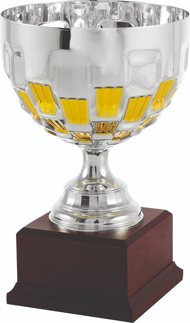 Trofeos en Albudeite