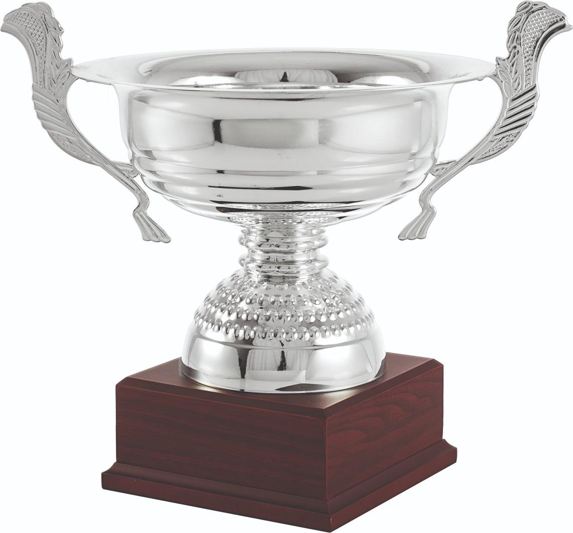 Trofeos en Tomares