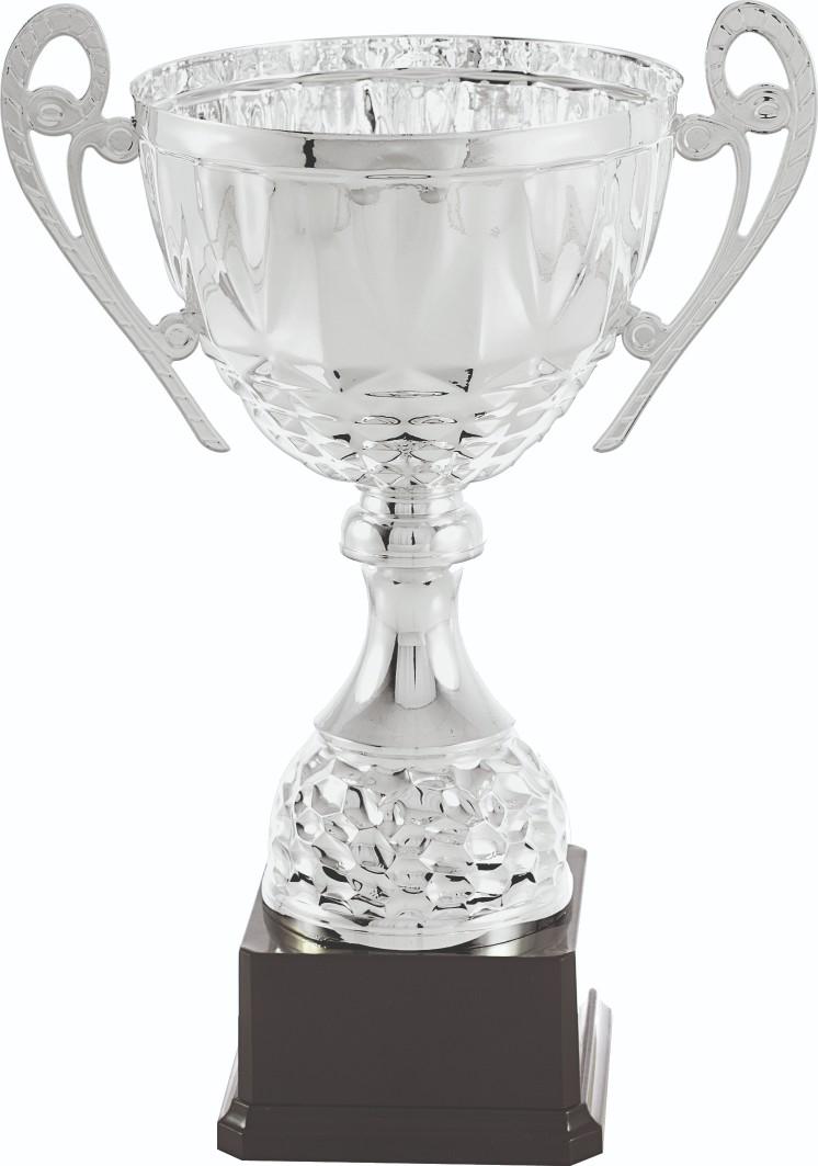 Trofeos en Súria