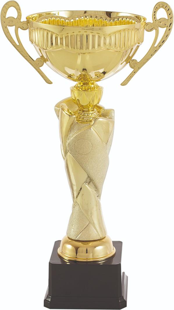 Trofeos en Cuntis
