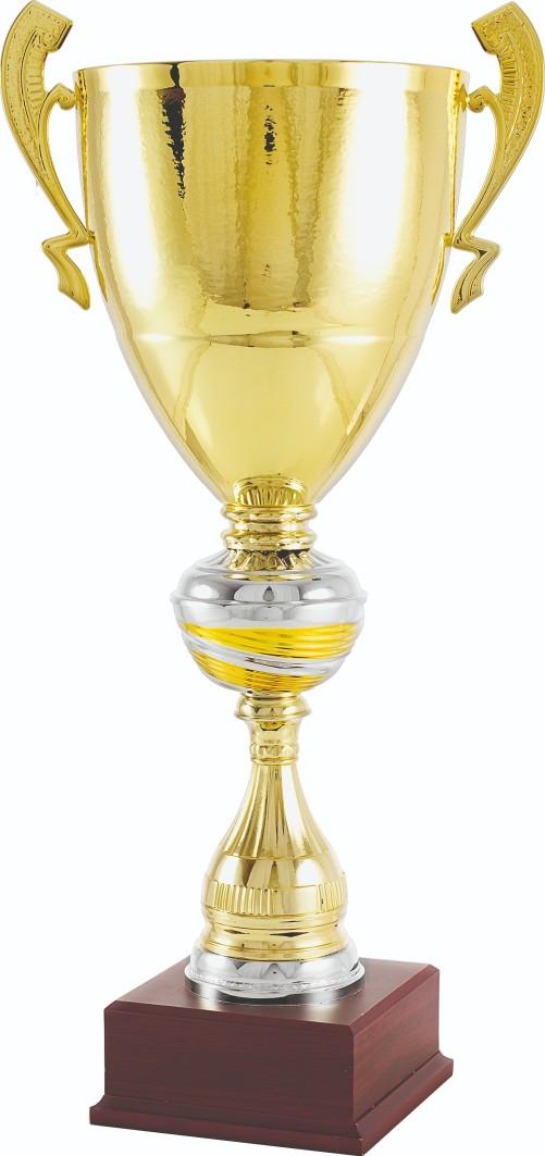 Trofeos en Marín