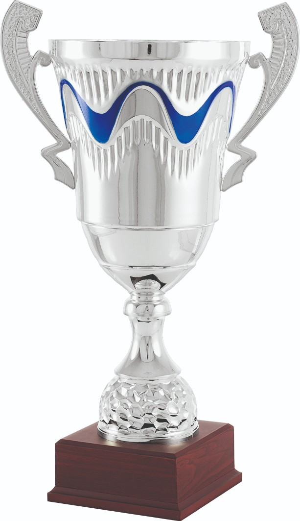 Trofeos en Olèrdola