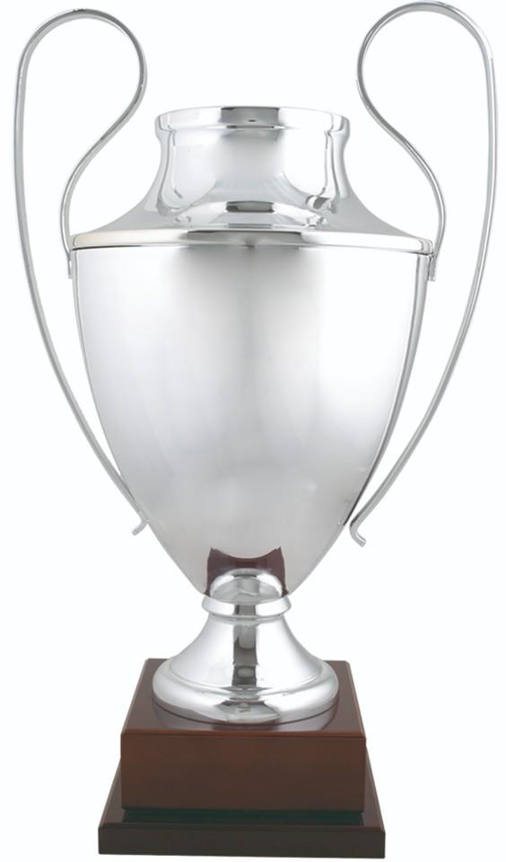 Trofeos en Villanueva de San Juan